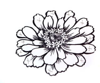 Zinnia-petals-selection