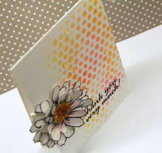 Zinnia-card-top-view